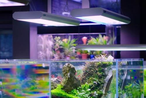 planted-aquarium-light-1