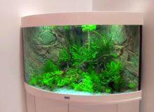 aquarium-stand.jpg