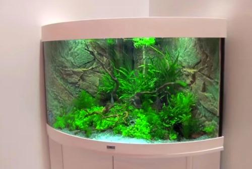 aquarium-stand
