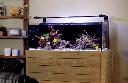 fish-tank-stand