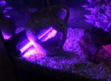 submersible-aquarium-light