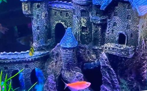 castle-aquarium-ornament