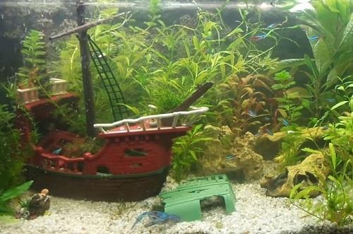 shipwreck-aquarium-decoration-2