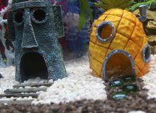 spongebob-aquarium-ornaments